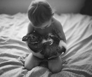 bed, bunny, and child image