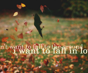 love, fall, and fall in love image