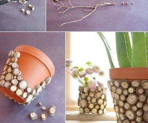 beautiful, potted flowers, and cute image