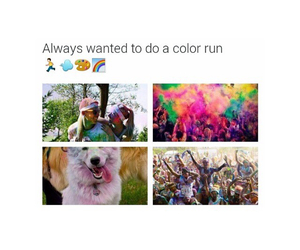 colours, color, and need image