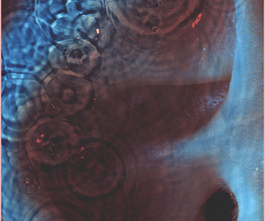 meddle, Pink Floyd, and music image