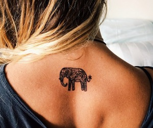 animals, blonde hair, and elephants image