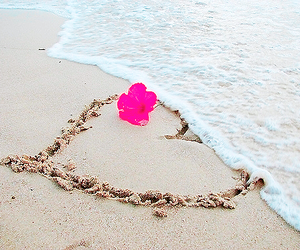beach, heart, and flowers image