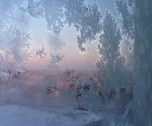 cold, snow, and finland image