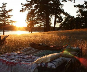 beautiful, camping, and nature image