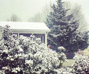 snow, winter, and snow falling image