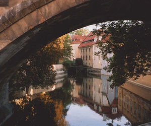 bridge, calm, and photography image
