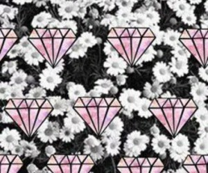 flowers, background, and diamond image