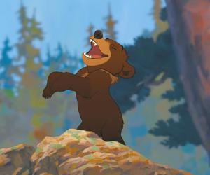 bear, brother, and koda image