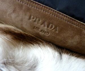 Prada, milano, and luxury image