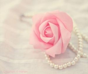 feminine, pearls, and pretty image