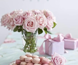 rose and sweet image