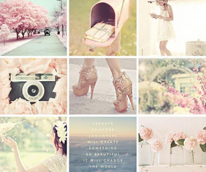 pink, flowers, and we heart it image