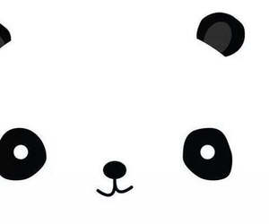 panda, wallpaper, and black image