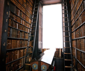 books, ladder, and library image
