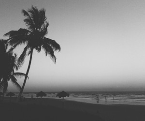 beach, blackandwhite, and coast image
