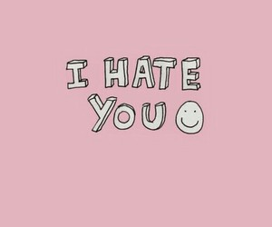 hate, pink, and phrases image