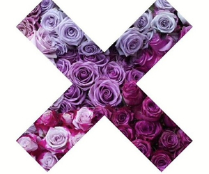 flowers, x, and purple image