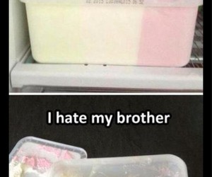 brother, funny, and lol image