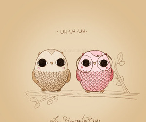 favorite, stuff, and owl image
