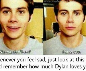 love, teen wolf, and dylan o'brien image