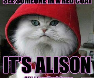 alison, red coat, and pll image