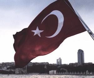 flag, freedom, and turkey image