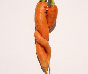 carrot, carrots, and faces image