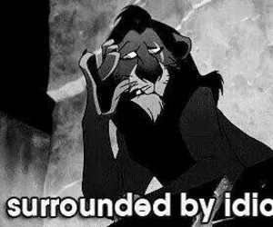 idiot, quote, and lion king image