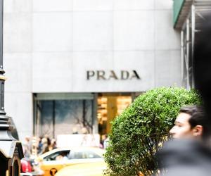 Prada and shopping image