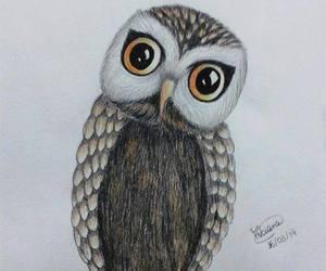 art, bird, and draw image