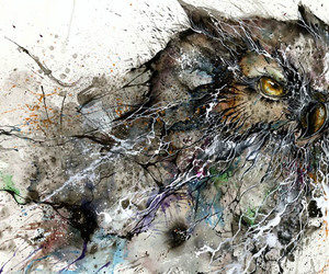 animals, art, and disegni image