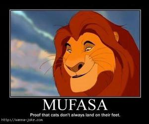 cat, funny, and lion king image
