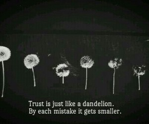 quotes, trust, and mistakes image