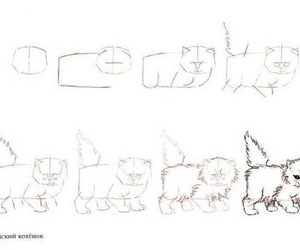 cat, draw, and art image