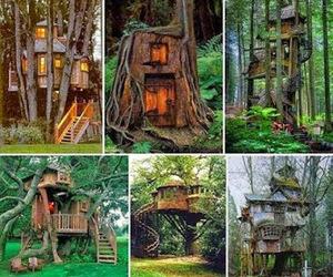tree houses image