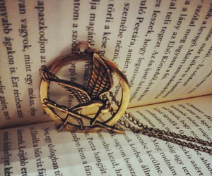 book, perfection, and thg image