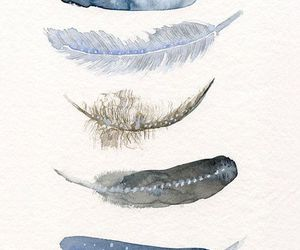 feather, art, and blue image