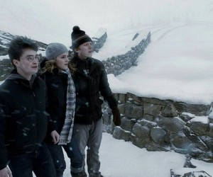 harry, hermione, and ron image