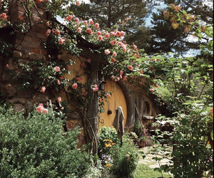 flowers, the shire, and hobbit image