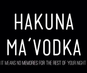 vodka, party, and hakuna matata image
