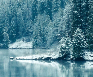 winter, nature, and blue image
