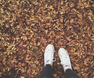 converse, fall, and photography image