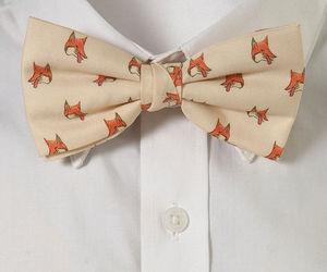 animal, shirt, and style image