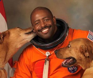 astronaut, dogs, and scout image