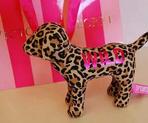pink, Victoria's Secret, and dog image