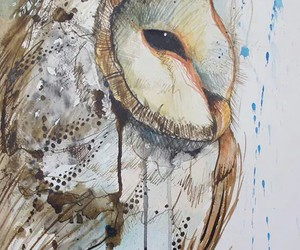 animal, water color, and art image