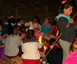 campfire, marshmello, and cheer camp image