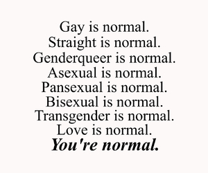 asexual, bisexual, and love quotes image