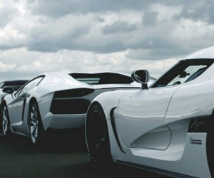 cars, Lamborghini, and white image